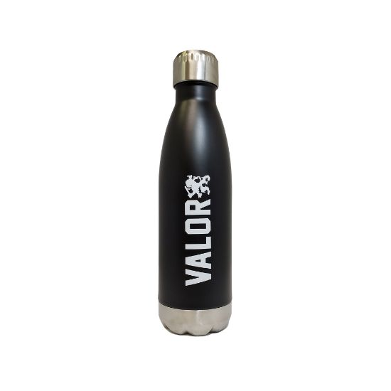 Picture of Valor Water Bottle (Black/Metal)
